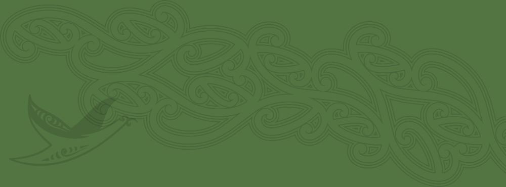 Copy of Copy of He taonga te wai #2